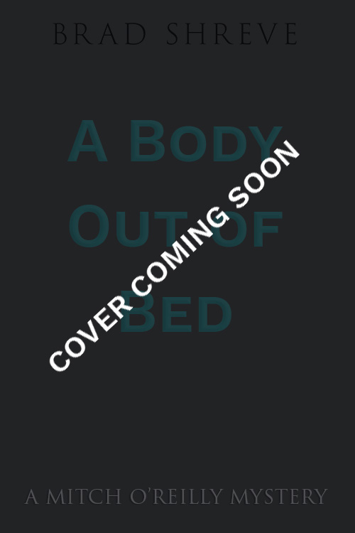 book cover reveal coming